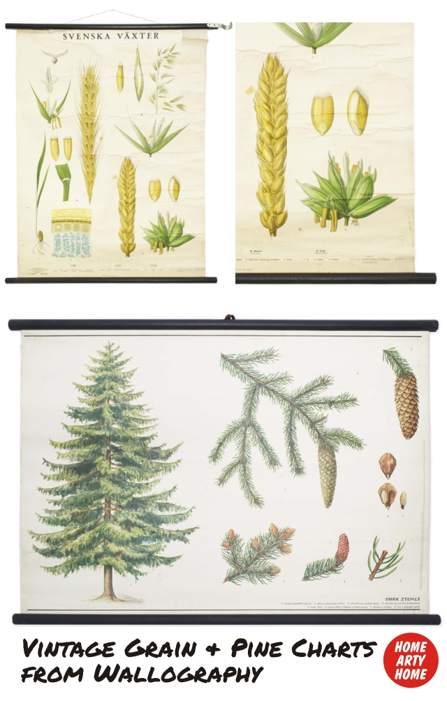 Wall Charts by Wallography homeartyhome grain and pine