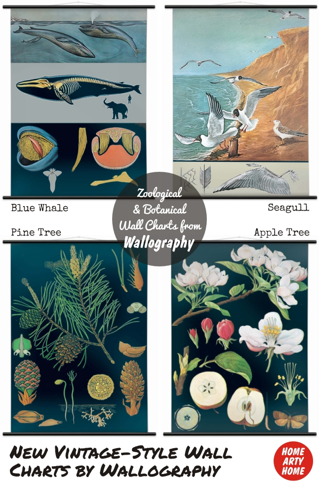 Wall Charts by Wallography homeartyhome new wall charts
