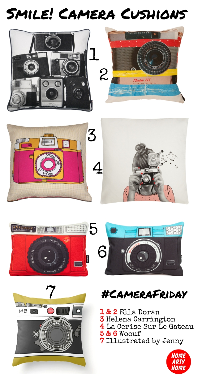 CameraFriday Cushions homeartyhome
